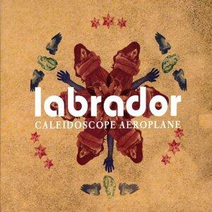 Labrador 歌手頭像