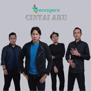 Teenagers 歌手頭像