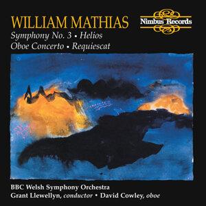 BBC Welsh Symphony Orchestra, David Cowley 歌手頭像