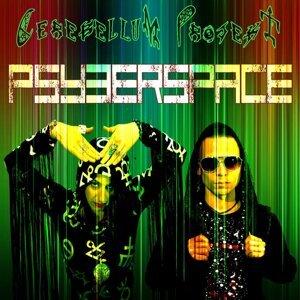 Cerebellum Projekt 歌手頭像