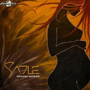 Sadle