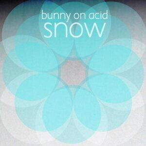 Bunny On Acid