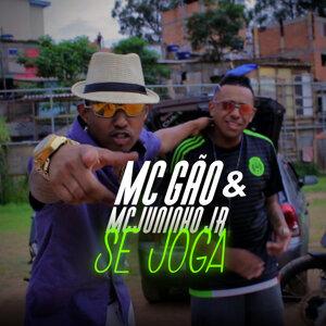 Mc Gão & Mc Juninho Jr 歌手頭像