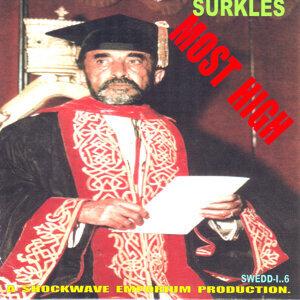 Surkles 歌手頭像