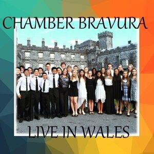 Chamber Bravura 歌手頭像
