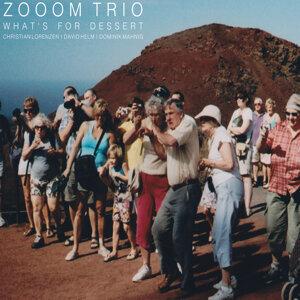 Zooom Trio 歌手頭像