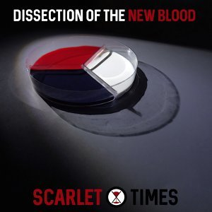 Scarlet Times 歌手頭像