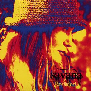 Savana 歌手頭像