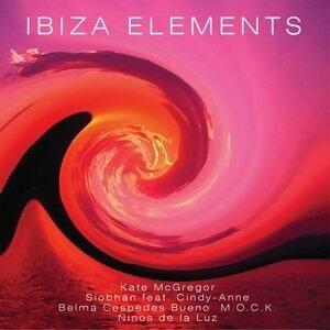 Ibiza Elements 歌手頭像