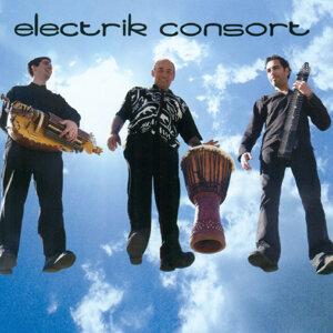 Electrik Consort