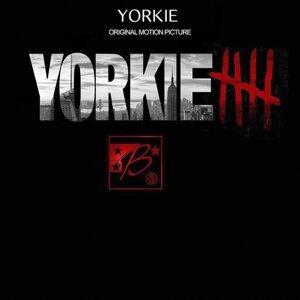 Yorkie 歌手頭像