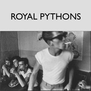 Royal Pythons 歌手頭像