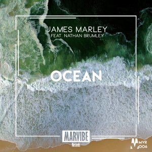 James Marley feat. Nathan Brumley 歌手頭像