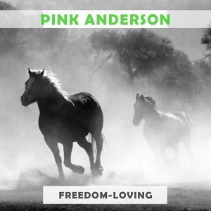 Pink Anderson 歌手頭像