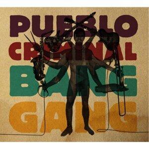 Pueblo Criminal 歌手頭像