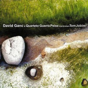David Ganc & Quarteto Guerra-Peixe 歌手頭像
