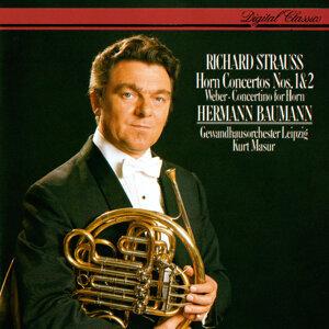 Hermann Baumann, Gewandhausorchester Leipzig, Kurt Masur 歌手頭像