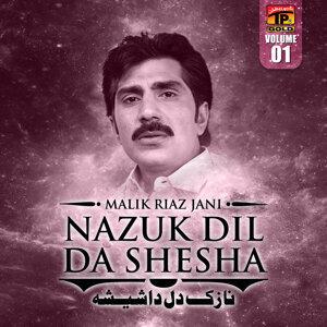 Malik Riaz Jani 歌手頭像