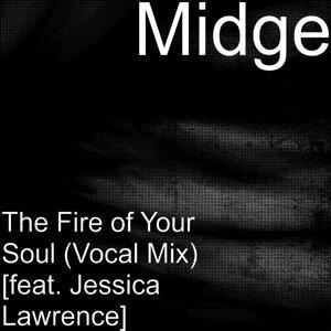 Midge 歌手頭像