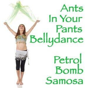 Petrol Bomb Samosa 歌手頭像