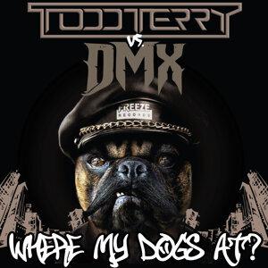 Todd Terry, DMX 歌手頭像