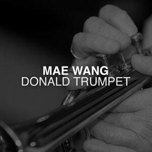 Mae Wang 歌手頭像