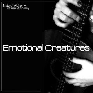 Natural Alchemy 歌手頭像