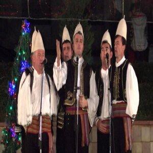 Grupi i Tepelenës 歌手頭像