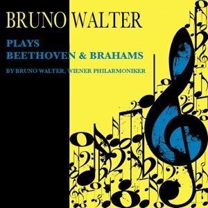 Wiener Philharmoniker, Bruno Walter 歌手頭像