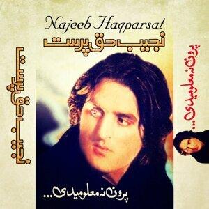 Najeeb Haqparsat 歌手頭像