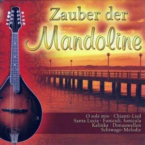 Wessel Dekker Mandolinenorchester, Mandolinenorchester Niederkassel 歌手頭像