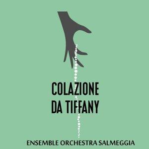 Ensemble Orchestra Salmeggia 歌手頭像