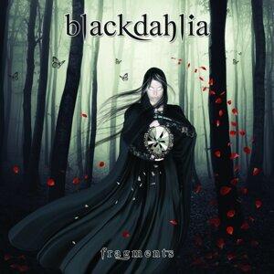 Blackdahlia 歌手頭像