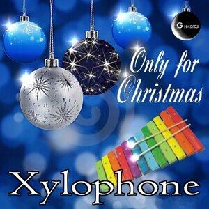 Xylophone 歌手頭像