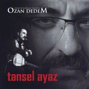 Tansel Ayaz 歌手頭像
