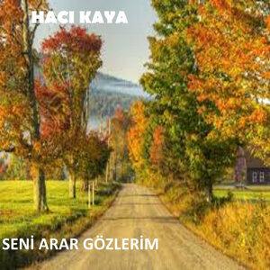 Hacı Kaya 歌手頭像