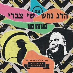 Hadag Nahash, Shai Tzabari 歌手頭像