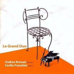 Andrea Bressan, Cecilia Franchini 歌手頭像