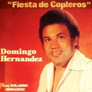 Domingo Hernandez 歌手頭像