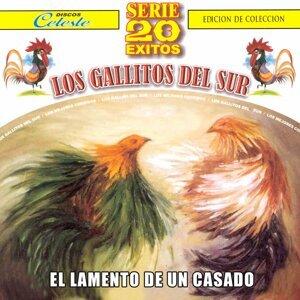 Los Gallitos Del Sur, El Tilingo Lingo 歌手頭像