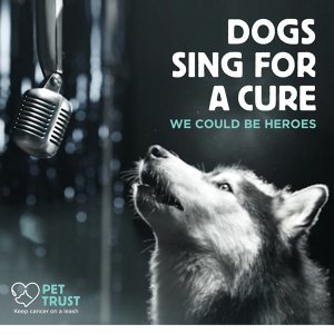 Dogs Sing For a Cure 歌手頭像
