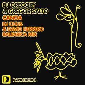 DJ Gregory Gregor Salto