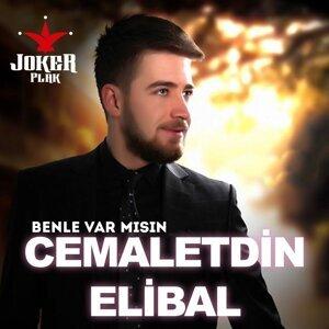 Cemaletdin Elibal 歌手頭像