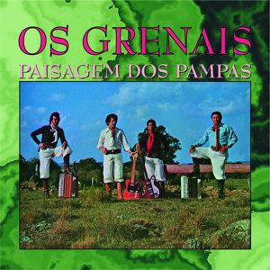 Os Grenais 歌手頭像