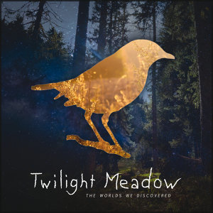 Twilight Meadow 歌手頭像