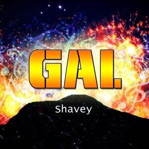 Shavey 歌手頭像