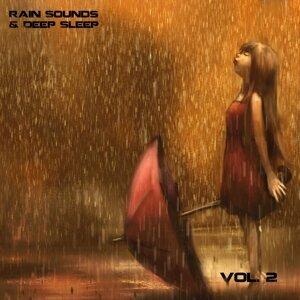 Rain Sounds & Deep Sleep Experts 歌手頭像