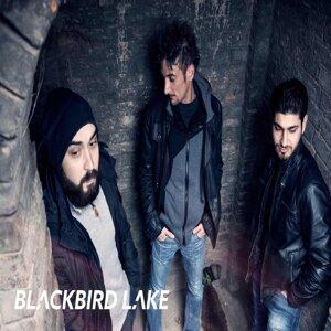 BlackBird Lake 歌手頭像