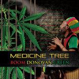 Boom Donovan Green