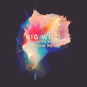 Big Wild 歌手頭像